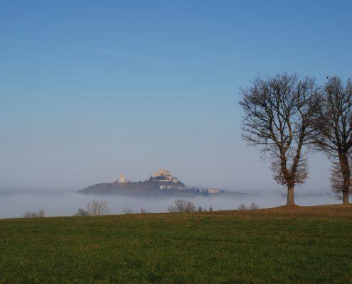 Copertina Home page nebbia