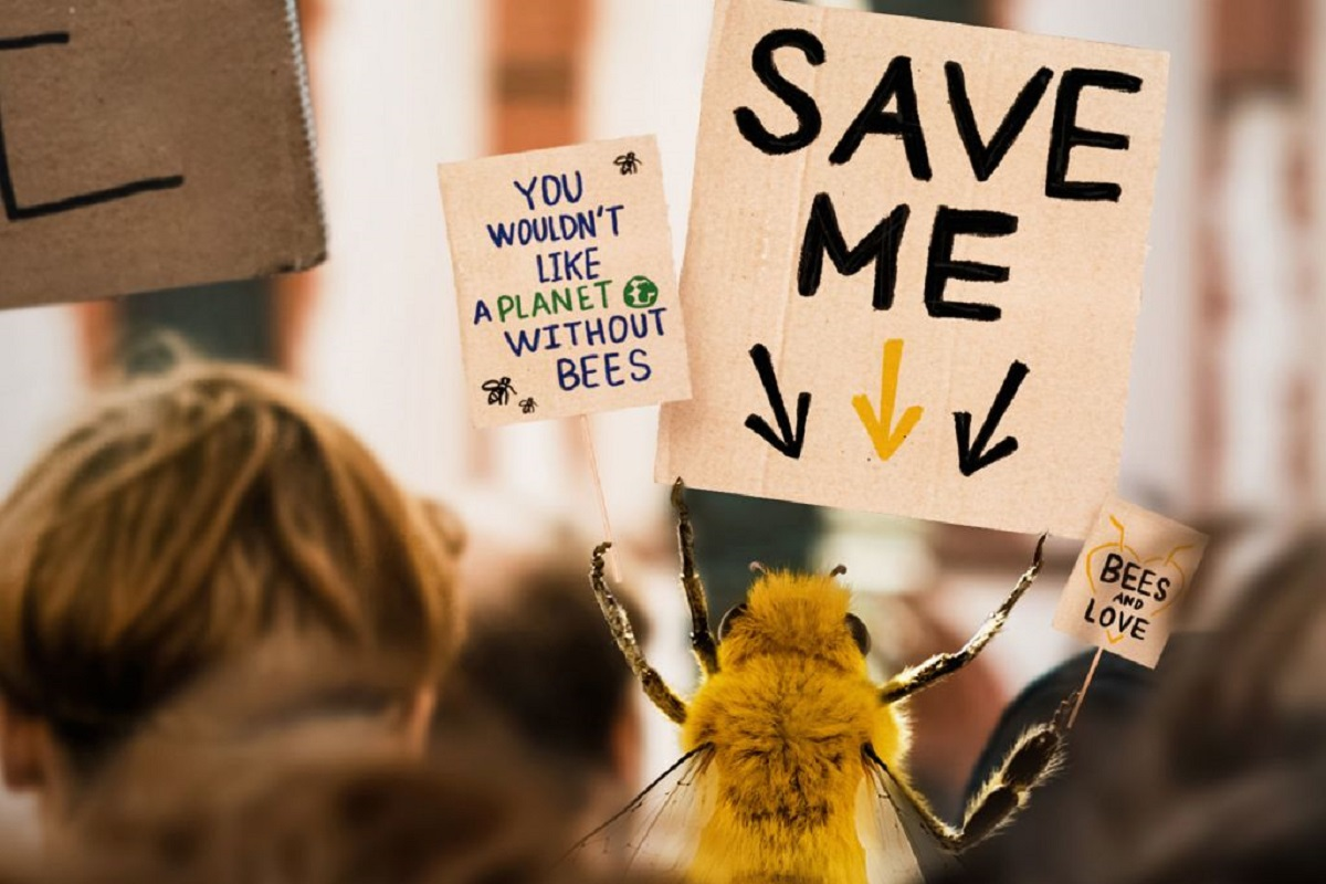 Un'ape influencer su Instagram per salvare il mondo - Casa del Sole